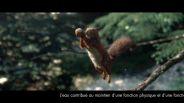 سنجاب بسکتبالیست